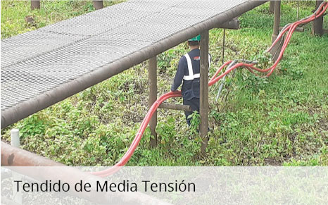 Tendido de media Tensión